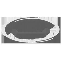 Hoist Container Handler